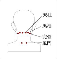 頭痛に効くツボ-天柱-風池-完骨-風門