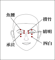 魚腰・攅竹・睛明・承泣・四白のツボ